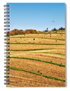 Murder's Row Spiral Notebook