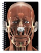Muscles Of The Face Spiral Notebook