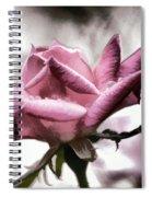Museum Park Pink Rose Spiral Notebook