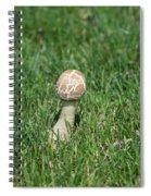 Mushroom 01 Spiral Notebook