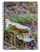 Mushroom 1 Spiral Notebook