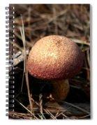 Mushroom And Pine Cone Neighbors Spiral Notebook