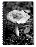 Mushroom In Black And White Spiral Notebook