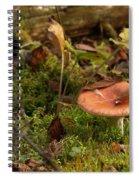 Mushroom N Moss Spiral Notebook