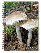 Mushroom Twins - All Grown Up Spiral Notebook