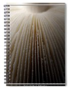 Mushroom With Watercolor Effect 4 Spiral Notebook