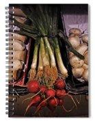 Mushrooms In The Seville Market  Spiral Notebook