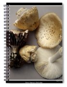 Mushrooms With Watercolor Effect 5 Spiral Notebook