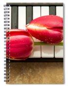 Musical Interlude Spiral Notebook