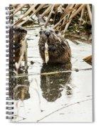 Muskrat Date Spiral Notebook