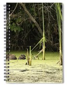 Muskrat Family Spiral Notebook