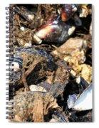 Mussels Spiral Notebook