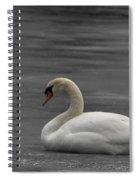 Mute Swan On Ice Spiral Notebook