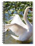 Mute Swan Wings Spiral Notebook