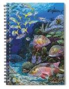 Mutton Reef Re002 Spiral Notebook