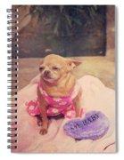 My Baby Spiral Notebook