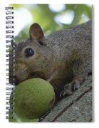 My Ball Spiral Notebook