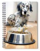 My Best Friend's Birthday Spiral Notebook