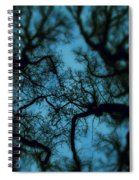 My Blue Dark Forest Spiral Notebook