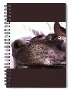 My Dog Bud Spiral Notebook