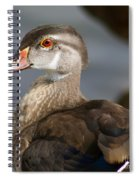 My Feather Friend - Wood Duck Spiral Notebook