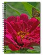 My Flower Spiral Notebook