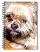 My Friend Lhasa Apso Spiral Notebook