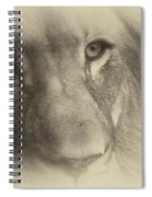 My Lion Eyes In Antique Spiral Notebook