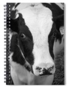 My Name Is Cow - Black And White Spiral Notebook