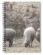 My Next Afghan Spiral Notebook