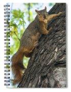 My Peanut Spiral Notebook