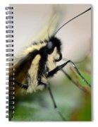 My Pet Butterlfy Spiral Notebook