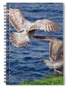 My Spot Spiral Notebook