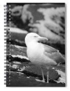 My Turf Spiral Notebook