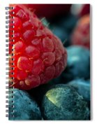 My Very Berry Spiral Notebook