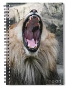 My What Big Teeth You Have Spiral Notebook