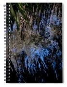 Myakka River State Park Reflections Sarasota Florida Usa Spiral Notebook