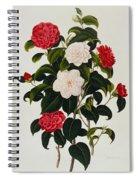 Myrtle Leaved Camellia Spiral Notebook
