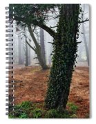 Mysterious Forest  Spiral Notebook