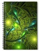 Mysterious Lights Spiral Notebook