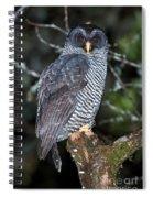 Mysterious Owl Spiral Notebook
