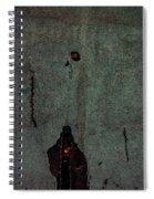 Mysterious Wall Spiral Notebook