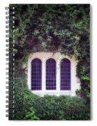 Mysterious Window Spiral Notebook