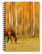 Mystic Autumn Grazing Horse Spiral Notebook