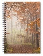 Mystic Woods Spiral Notebook