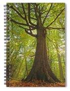 Mystical Forest Tree Spiral Notebook