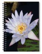 Mystical White... Spiral Notebook