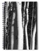 Mystick Spiral Notebook