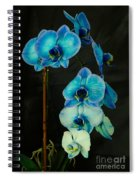 Mystique Blue Orchids Spiral Notebook