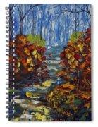 Mysty Morning Path Spiral Notebook